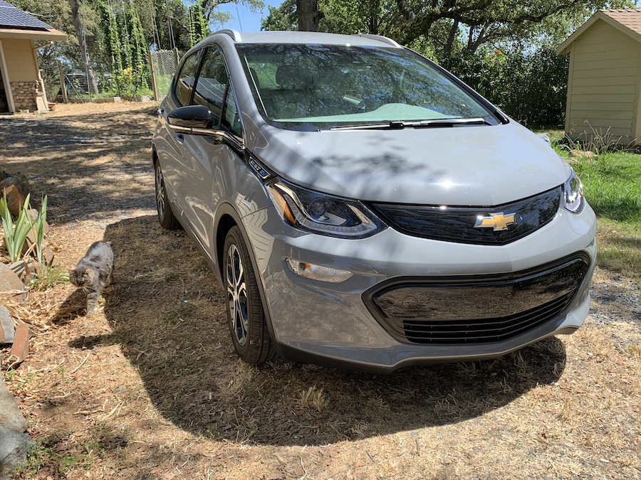 2019 Chevrolet Bolt EV with cat